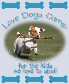 Love Dogs Camp